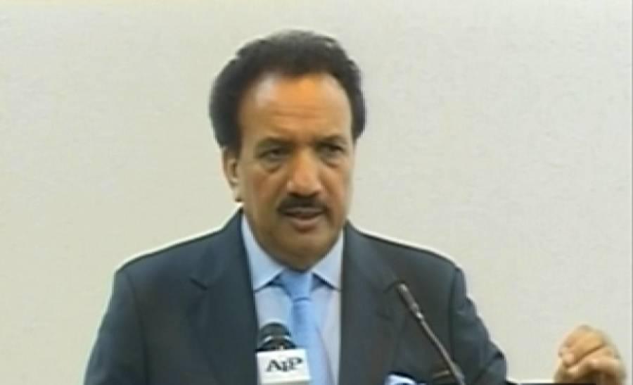 رحمان ملک نے دفاع پاکستان کونسل سے حکومتی رٹ چیلنج نہ کرنے کی اپیل کردی