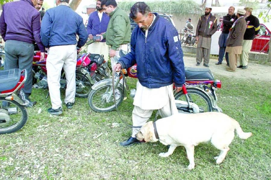 لانگ مارچ کے موقع پر سراغ رساں کتے کی مدد سے تلاشی لی جاری ہے(فوٹوپاکستان)