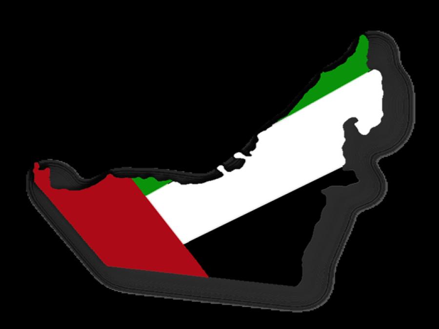 عرب حکام نے القاعدہ کا سات رکنی گروہ گرفتار کرلیا