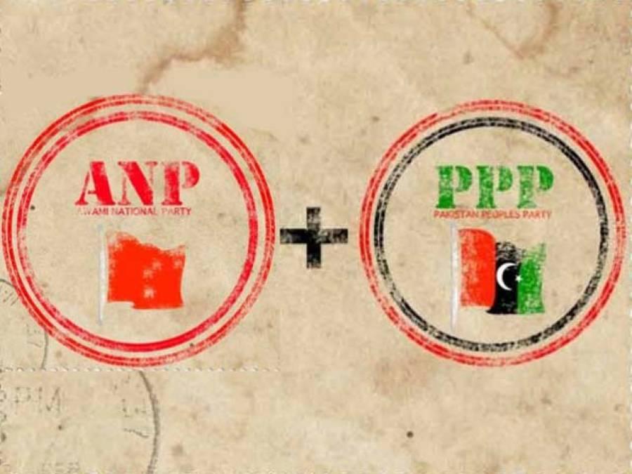 اے این پی کا پی پی کے صدارتی امیدوار کی حمایت کا اعلان ، انتخابات میں جانے یا بائیکاٹ کا فیصلہ آج کریں گے : رضاربانی