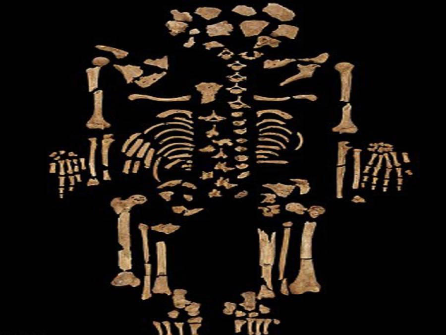 کینسر ایک قدیم مرض، 3200سال پرانا کینسر زدہ ڈھانچہ دریافت