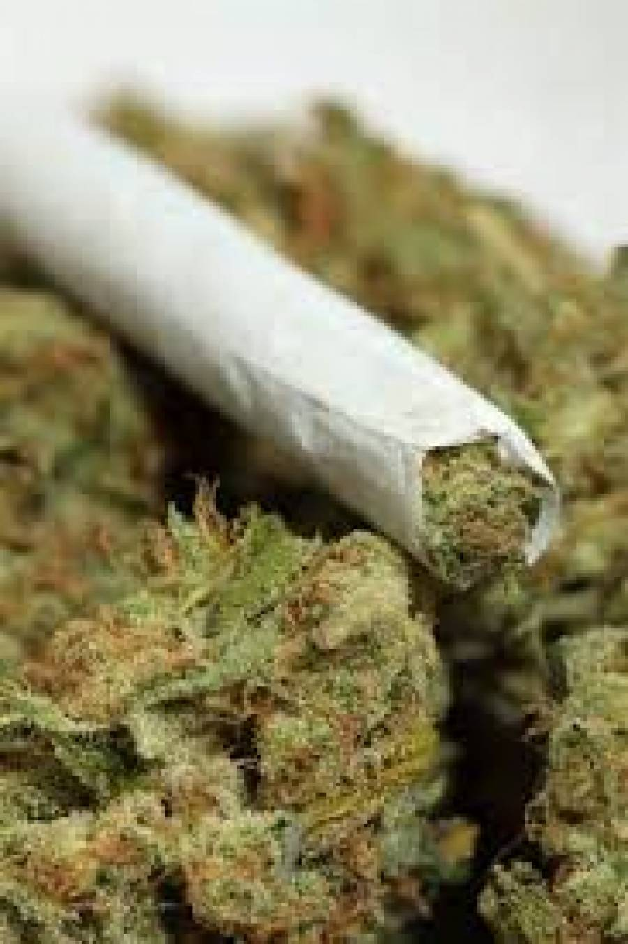 legalizing marijuana in uruguay essay Legalizing marijuana while most people recognize only the negative and harm that goes with marijuana use in society, there are several positive effects that are being ignored.