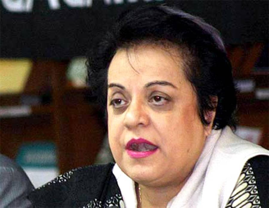 خواجہ سعد رفیق اور ان کے ساتھی بوکھلاہٹ کا شکار ہیں: شیریں مزاری