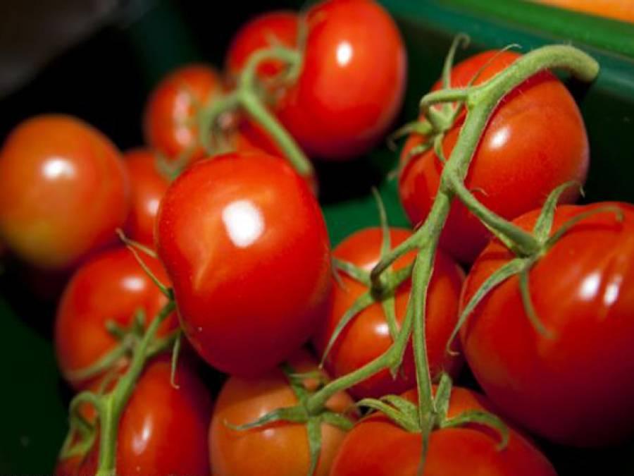 بے اولاد جوڑوں کے لئے ٹماٹر انتہائی مفید