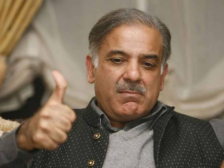 سیاسی جماعتوں کا آئین کے تحفظ کا عزم خوش آئند : شہباز شریف