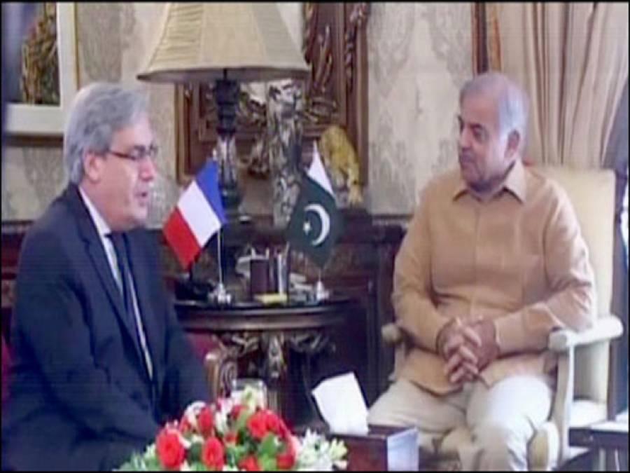 وزیراعلی پنجاب سے فرانسیسی سفیر کی ملاقات،باہمی دلچسپی کے امور اور دوطرفہ تعلقات کے فروغ پر تبادلہ خیال