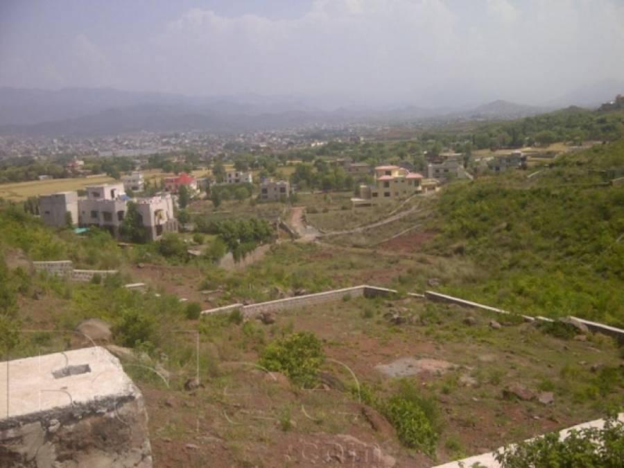 بنی گالہ میں سیکیورٹی فورسز کا مشترکہ سرچ آپریشن ، اسلحہ برآمد ، ملزم گرفتار