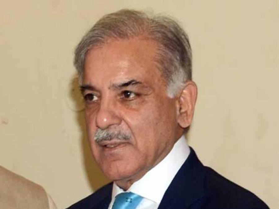 وزیر اعلی پنجاب کو نااہل قرار دینے کیلئے ہائیکورٹ میں درخواست دائر