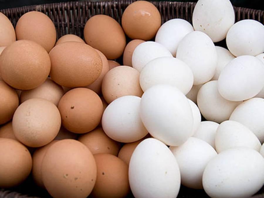 سفید اور براﺅن انڈوں کے درمیان فرق ،دلچسپ تحقیق