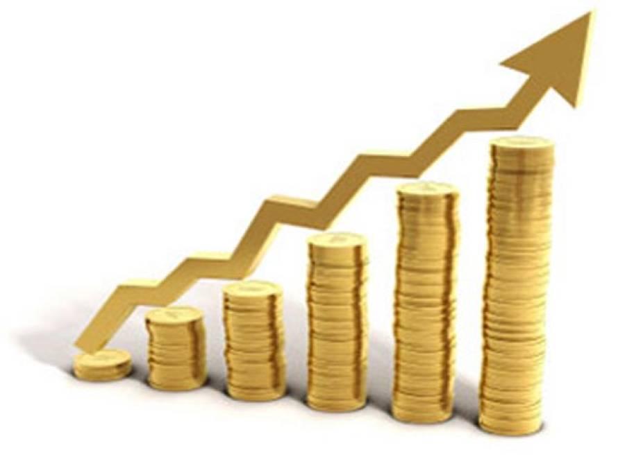 پاکستان میں سب سے زیادہ سرمایہ کاری تیل و گیس کے شعبے میں ہوئی