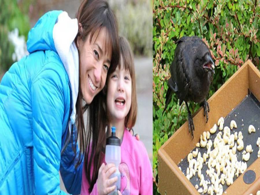 پیارکی انوکھی داستان ، وہ لڑکی جس پر پرندے بھی مہربان ہیں