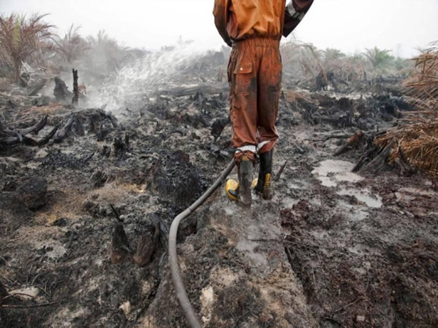 ڈالمیاشانتی نگر کے قریب جھونپڑیوں میں آگ، فائر بریگیڈ نے قابو پالیا