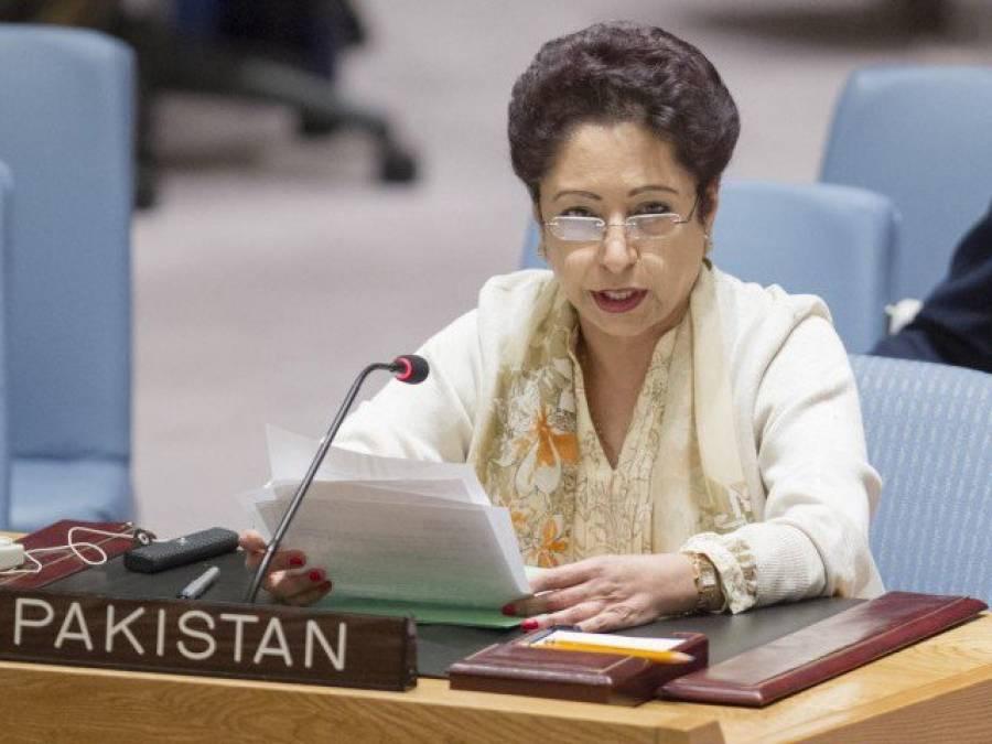 پاکستان افغان امن عمل میں تعاون کیلئے تیار ہے : ملیحہ لودھی