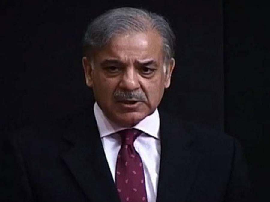 پی آئی اے ایکشن کمیٹی اور شہباز شریف میں مذاکرات کراچی کے ایک بزنس مین نے کرائے