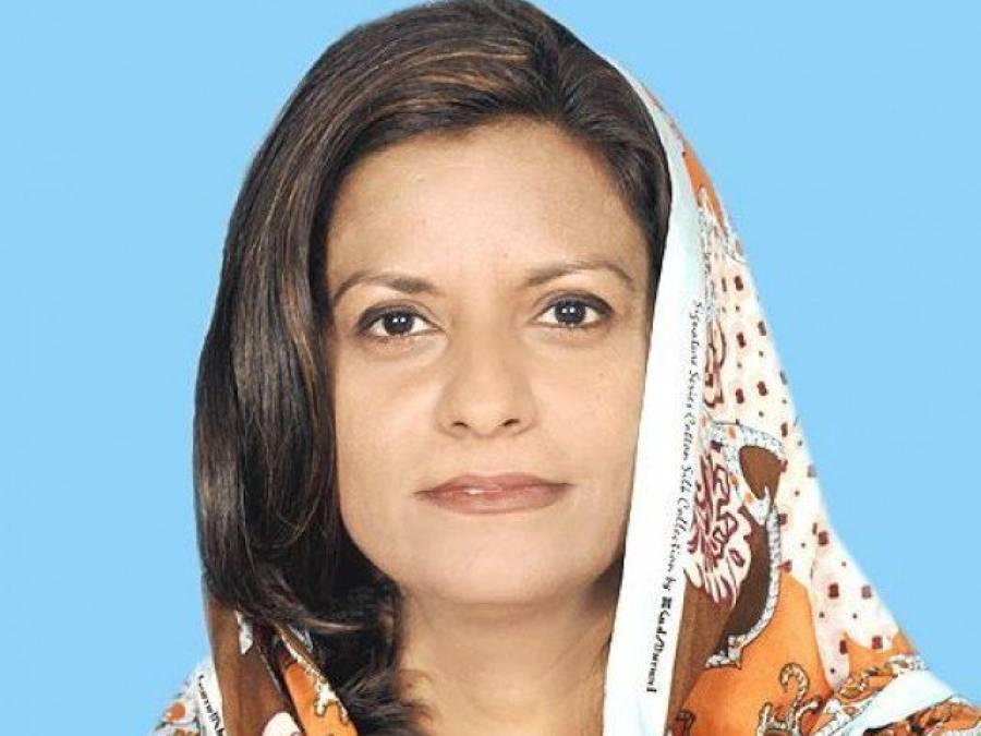 پراسرار انداز میں پاکستان ائیرویز بنائی گئی، رپورٹ پیش کریں ردعمل دیں گے: نفیسہ شاہ