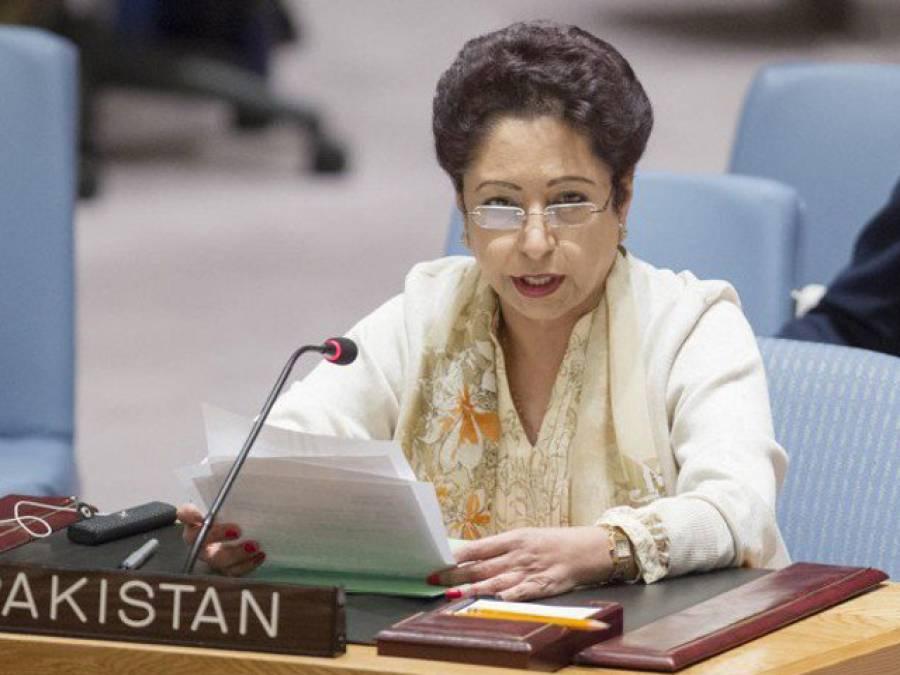 دہشتگردی کیخلاف سب سے زیادہ قربانیاں دیں،پاکستان پر الزامات بے بنیاد ہیں :ملیحہ لودھی