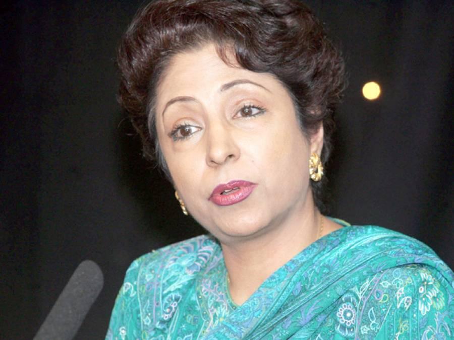 پاکستان نے ڈرون حملے رکوانے کے لئے عالمی برادری کی حمایت حاصل کر لی: ڈاکٹر ملیحہ لودھی