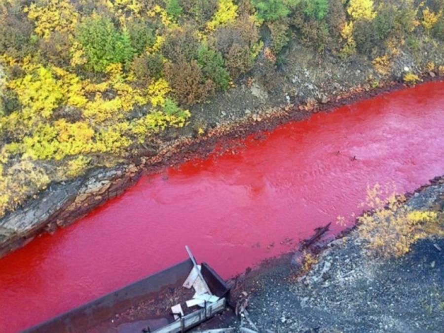 روس میں دریا کا رنگ خونی ہو گیا،تحقیقات شروع