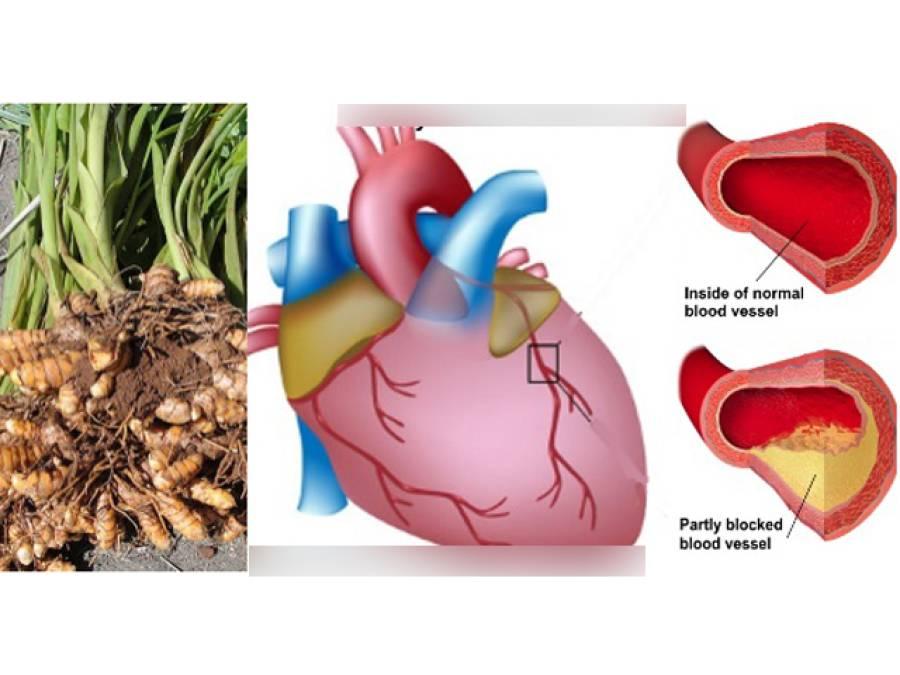 آپ کے کچن میں موجود وہ ایک قدرتی چیز جس کا ایک چمچ کھانا صحت کیلئے ایک گھنٹہ ورزش کے برابر ہے
