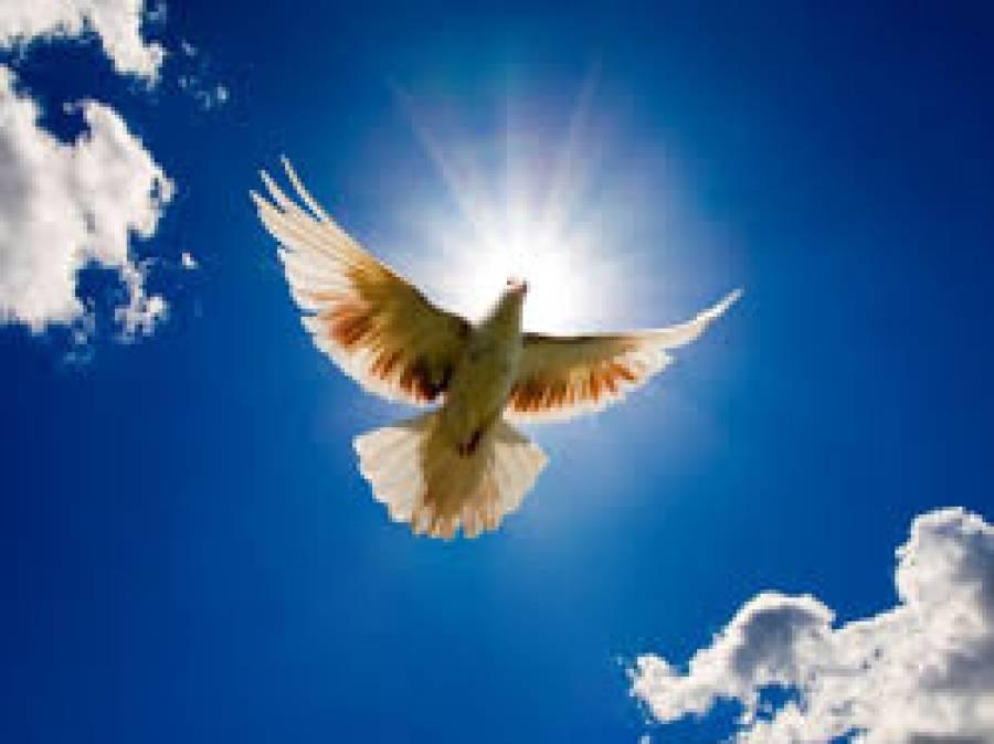 پاکستا ن سمیت دنیا بھر میں امن کا عالمی دن کل منایا جائے گا