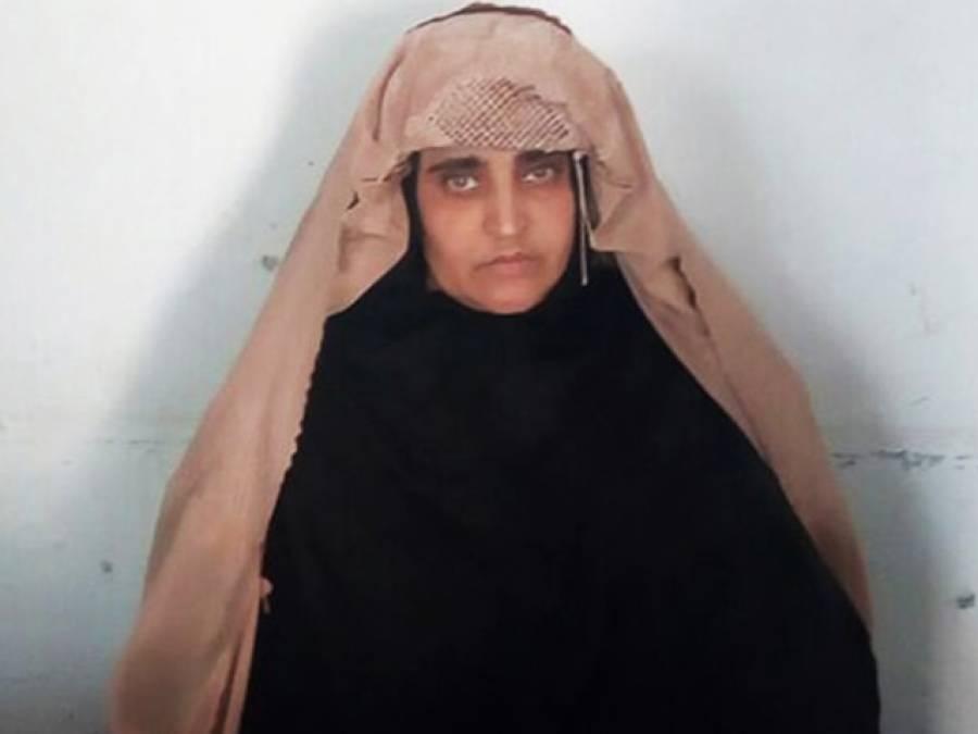 پشاور ہائی کورٹ نے افغان خاتون شربت گلہ کو ملک بدر کرنے کا حکم سنا دیا