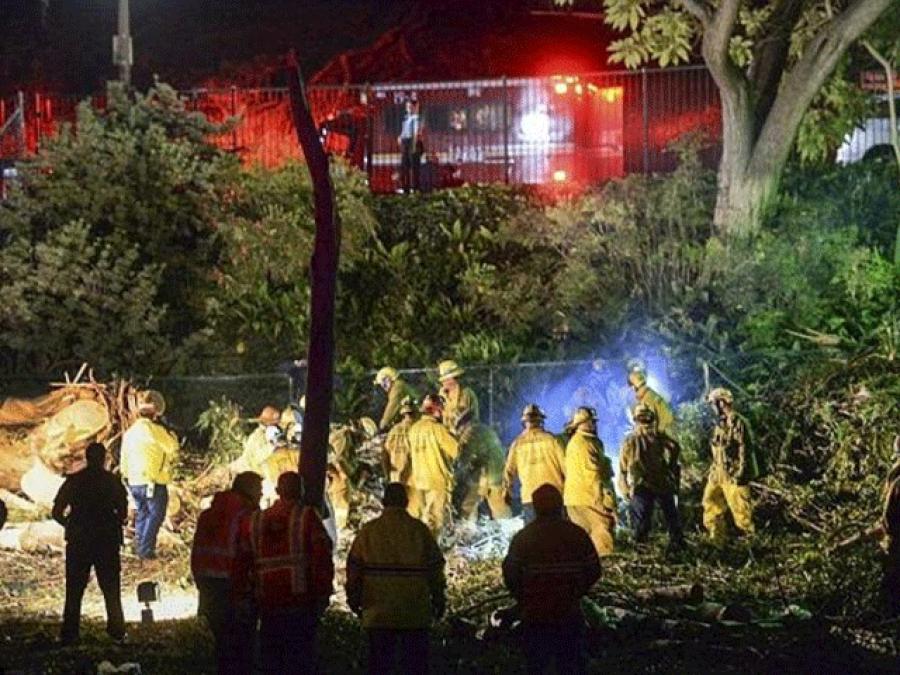 شادی کی تقریب میں درخت گرنے سے خاتون ہلاک