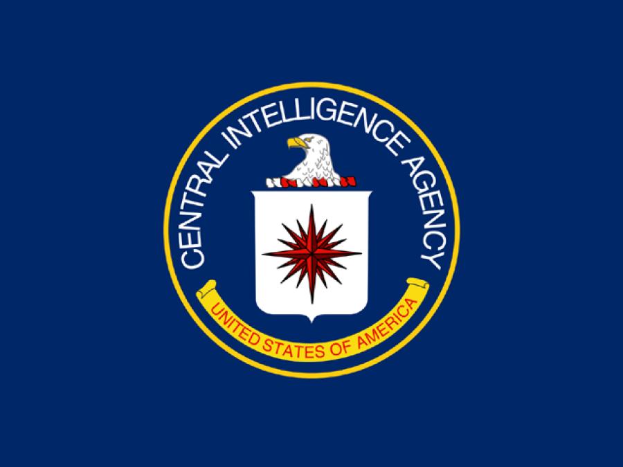 """پاکستانی، بھارتی اور اسرائیلی """"نادان"""" قومیں ہیں: سی آئی اے"""