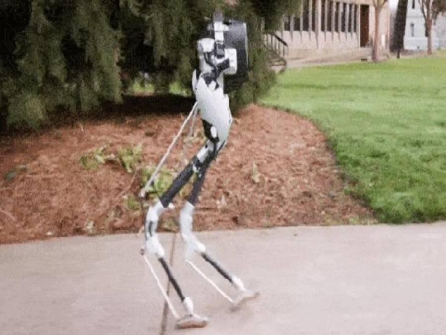 شتر مرغ سے ملتا جلتا روبوٹ تیارکرلیا گیا