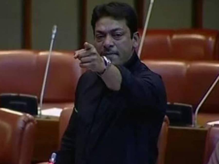 سندھ میں افغان مہاجرین کی تعداد چار کروڑ سے تجاوز کرچکی، پی پی عہدیداران انہیں شناختی کارڈ بنوا کر دے رہے ہیں: فیصل رضا عابدی