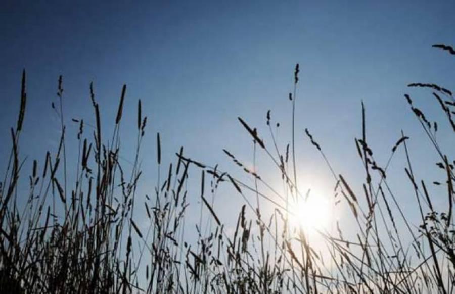 ملک کے بیشتر علاقوں میں موسم خشک اور گرم رہے گا: محکمہ موسمیات
