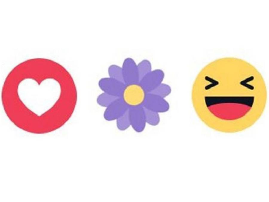 فیس بک پر نظر آنے والا یہ جامنی رنگ کا پھول تو آپ نے بھی دیکھا ہو گا، مگر یہ کیوں شامل کیا گیا ہے اور اس کا مقصد کیا ہے؟ تفصیلات سامنے آ گئیں، جان کر آپ بھی خوش ہو جائیں گے