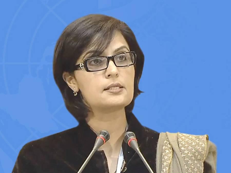 عالمی ادارہ صحت کے سربراہ کے انتخابات، پاکستانی ڈاکٹر ثانیہ نشتر مضبوط ترین امیدوار