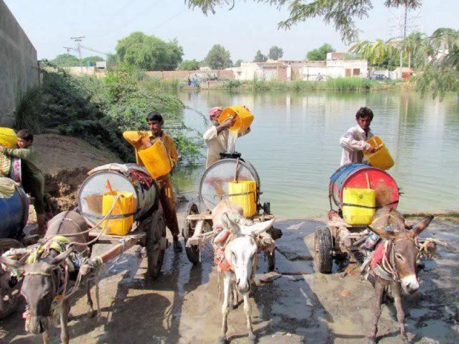 بلوچستان میں انسان اور جانور ایک گھاٹ پر پانی پیتے ہیں
