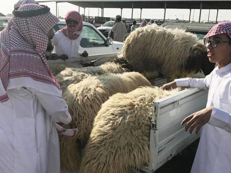 'اس کام کے پیسے میں ادا کروں گا' سعودی بادشاہ نے سعودی عرب آنے والے حجاج کو سب سے شاندار تحفہ دینے کا اعلان کردیا