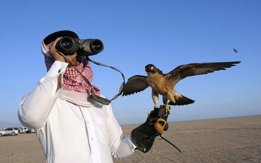 قطری شہزادہ عبدالرحمن جاسم شکار کیلئے نور پور تھل پہنچ گیا، کسانوں کا شدید احتجاج