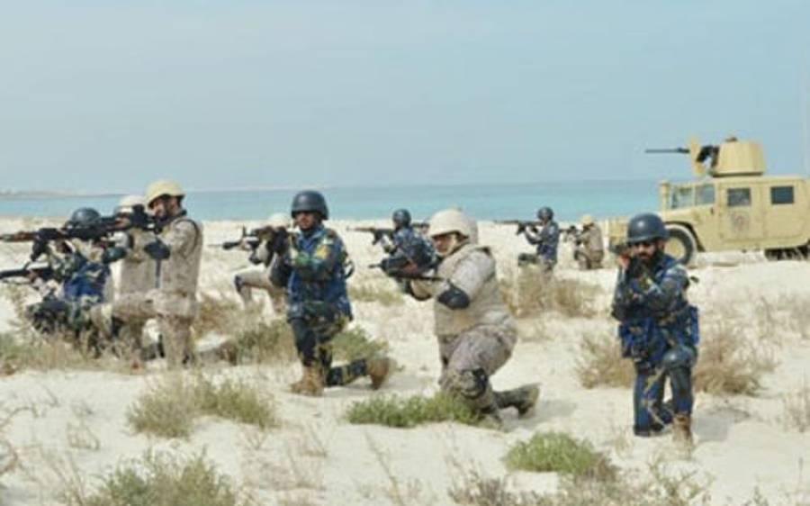 خلیج عرب میں سعودی پاکستانی افواج کی بحری مشقیں