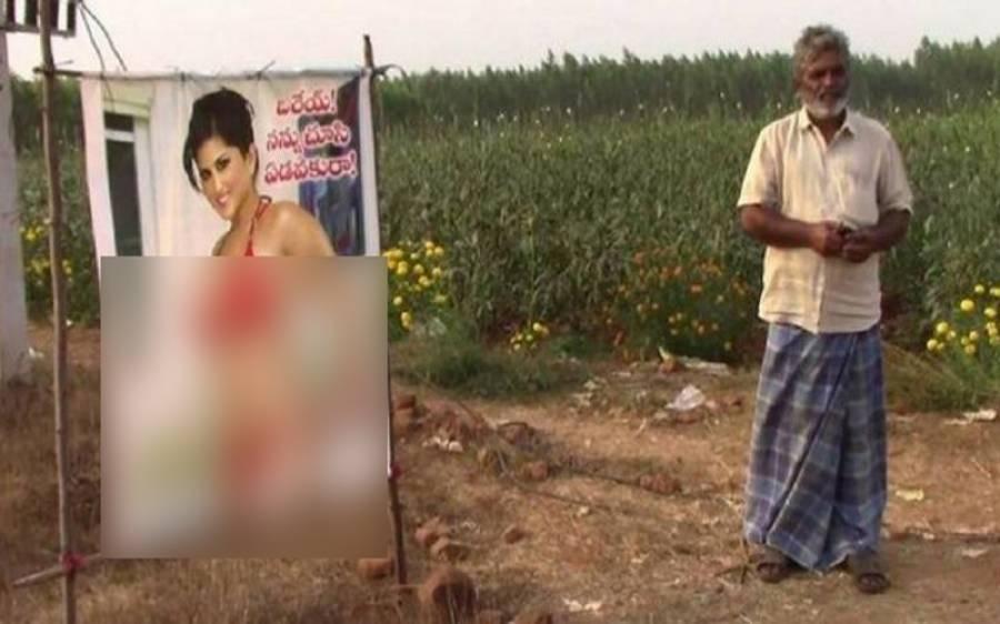 اس کسان نے اپنے کھیت میں سنی لیون کی یہ فحش تصویر کیوں لگا رکھی ہے؟ اس کی وجہ جان کر آپ بھی ہنس ہنس کر لوٹ پوٹ ہوجائیں گے