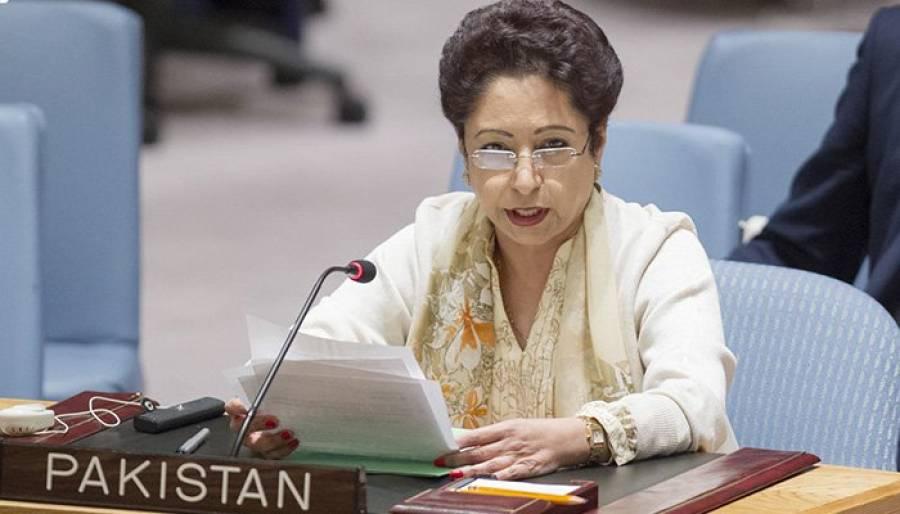 پاکستان نے نوجوانوں کو معاشرے کا فعال رکن بنانے ،انتہا پسندی کسے نمٹنے کی حکمت عملی کابھرپورنفاذ کیاہے،ملیحہ لودھی