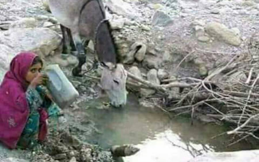 موسم گرما کی آمد کے ساتھ ہی صحرائے تھر میں پینے کے پانی کابحران شدت اختیار کرگیا، انسان بھی جانوروں کیساتھ پانی پینے پر مجبور