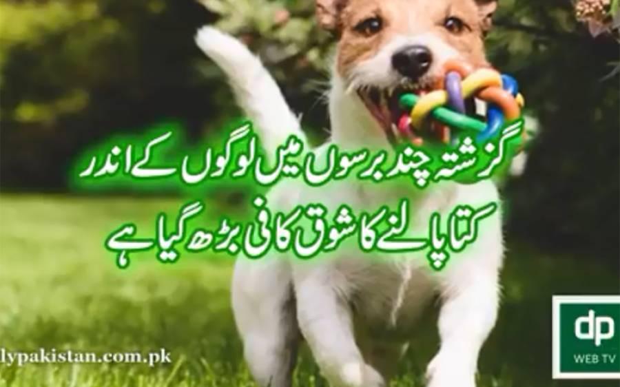 اسلام اور سائنس ،گھر میں کتے پالنا جدید سائنسی معلومات کی روشنی میں آپ بھی جانئے