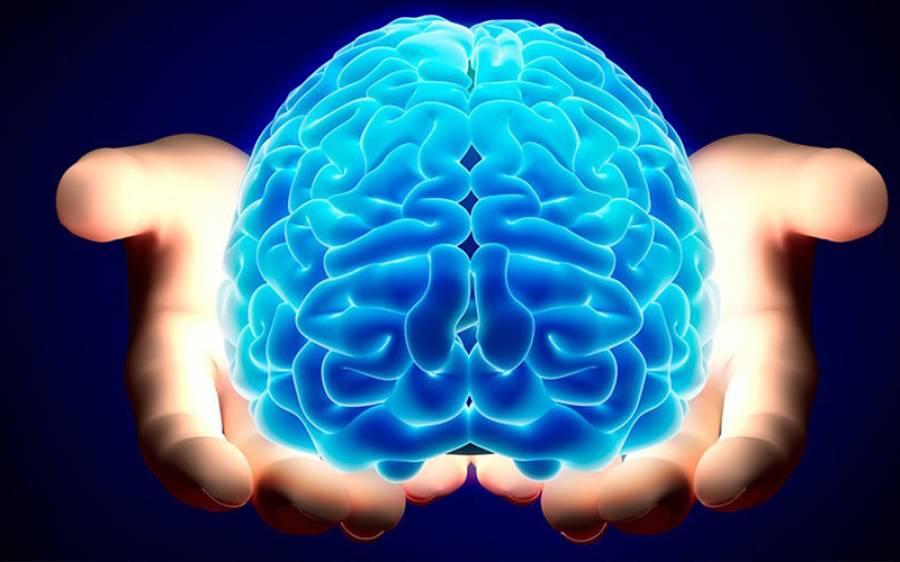 'سر کے علاوہ آپ کے جسم کے اس حصے میں بھی 'دماغ' ہوتا ہے' سائنسدانوں نے اب تک کا سب سے حیران کن انکشاف کردیا
