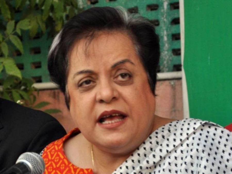 شیری مزاری نے عالمی برادری سے کشمیر میں جاری بھارتی مظالم کے خلاف آواز اٹھانے کا مطالبہ کردیا