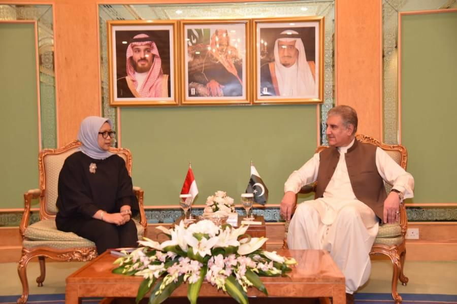 وزیر خارجہ مخدوم شاہ محمود قریشی کی انڈونیشین ہم منصب سے ملاقات،