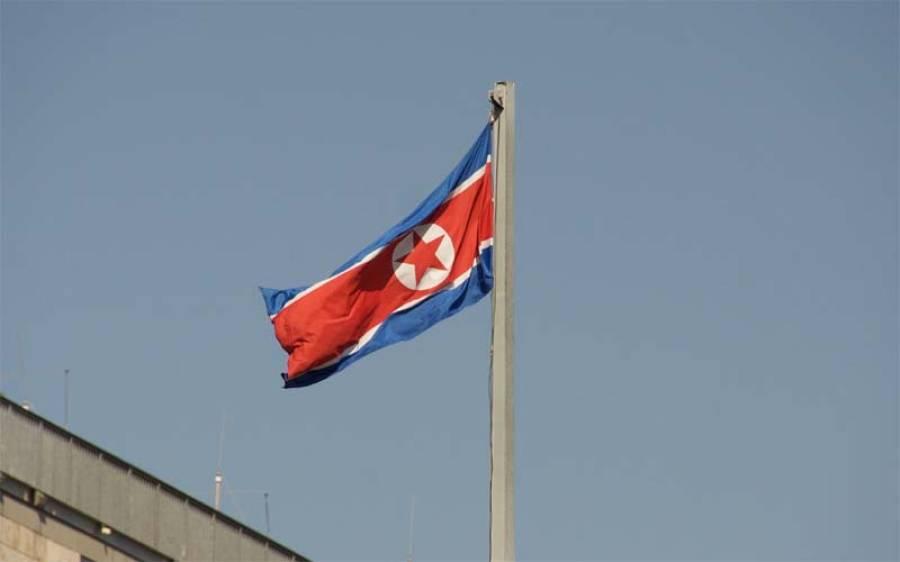 شمالی کوریا کے وزیر خارجہ نے امریکی ہم منصب کو امریکی سفارتکاری کا زہریلا پودا قرار دے دیا
