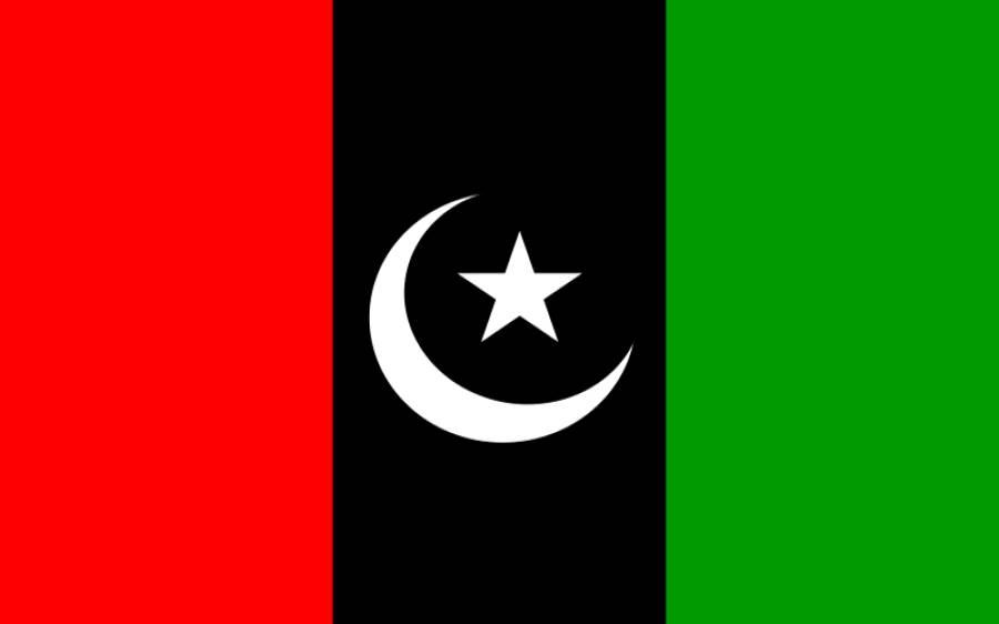 پیپلزپارٹی کا مولانا فضل الرحمان کے دھرنے کی حمایت نہ کرنے کا فیصلہ ،ڈی چوک جانے کی بھی مخالفت کردی