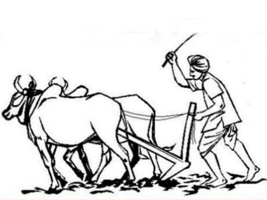 کسان کی اہمیت اوراس کاغم