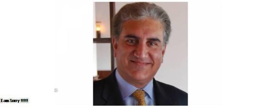 پاکستان کو آئی ایم ایف سے ایک سال کیلئے قرض ریلیف مل گیا،شاہ محمود قریشی