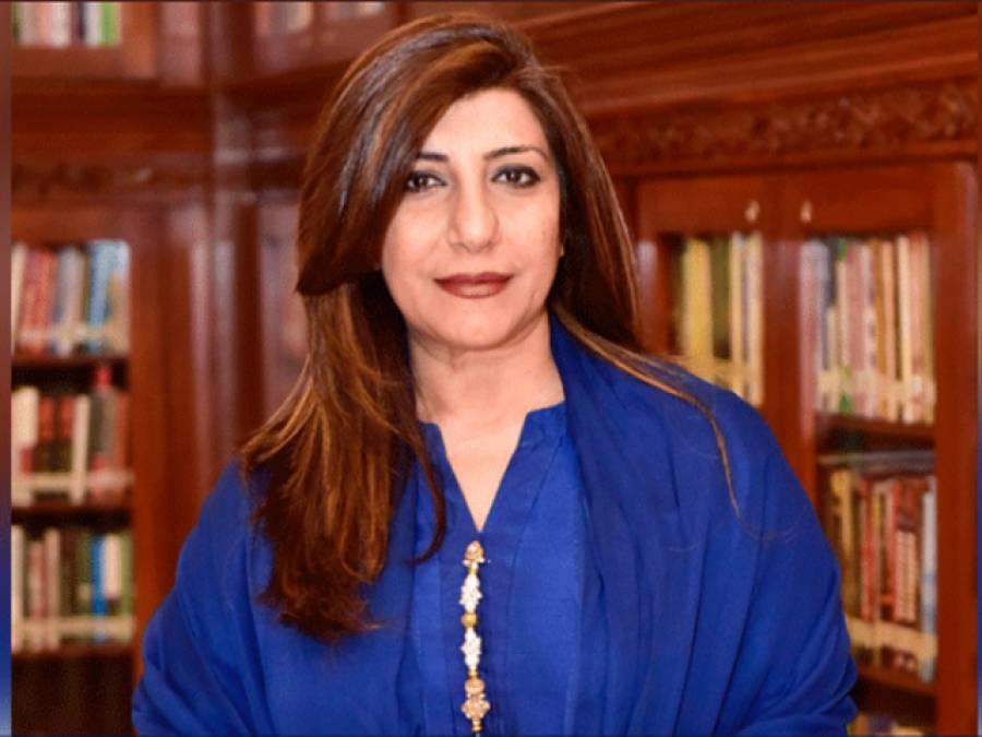 دراندازی کے بھارتی الزامات کے بعد پاکستان نے مودی سرکار کو کرارا جواب دے دیا