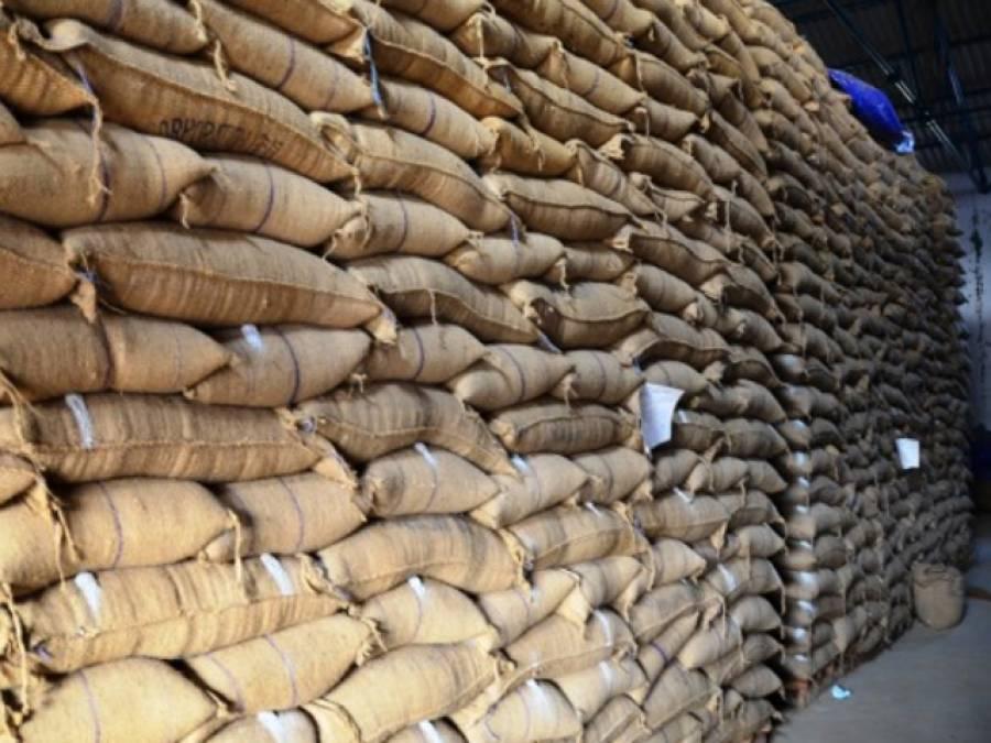 پنجاب حکومت اب تک کتنی گندم خرید چکی اور ہدف کتنا ہے؟ناقابل یقین تفصیلات جانئے