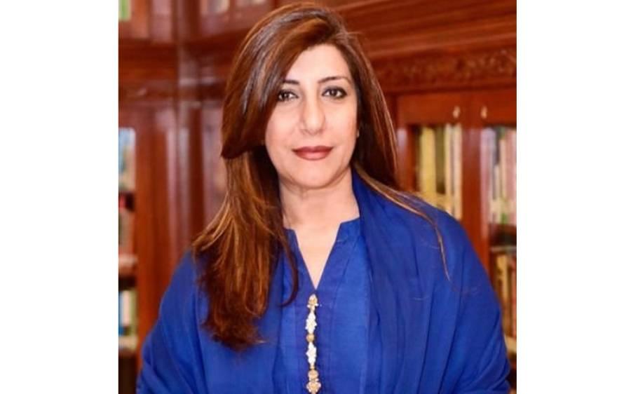 پاکستان نے مقبوضہ کشمیر میں بھارت کے نئے ڈومیسائل قانون کو مسترد کر دیا